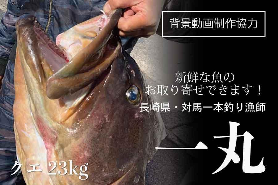 〈動画制作協力〉長崎県対馬一本釣り漁師 一丸さん